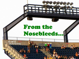 From the Nosebleeds – Backyard Soccer