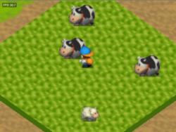 HM Grass